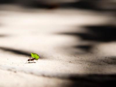 Groß denken – klein anfangen: Frischer Wind für Marketing und Vertrieb