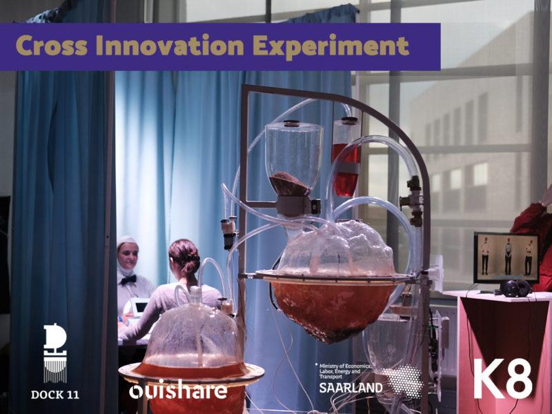 Cross Innovation Experiment